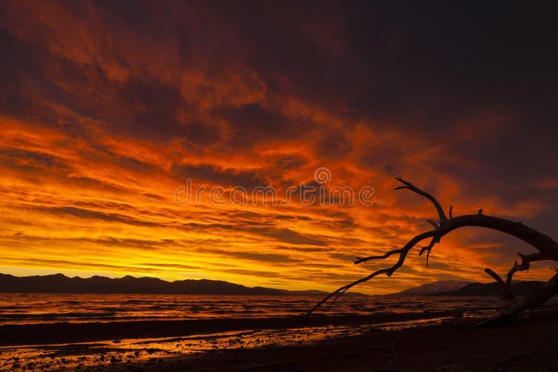 Wschód słońca nad Ostrosłup jeziorem w Nevada zdjęcie royalty free