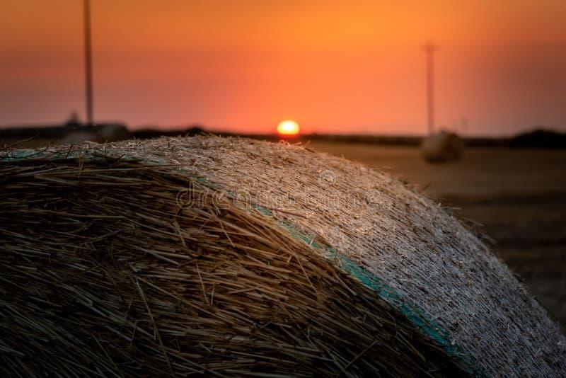 Wschód słońca nad pole banatka z belami fotografia stock