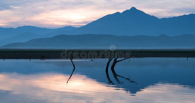 Wschód słońca nad stronniczo zanurzać nieżywymi gałąź w Jeziornym Isabella w sierra Nevada góry w środkowym Kalifornia usa zdjęcie royalty free