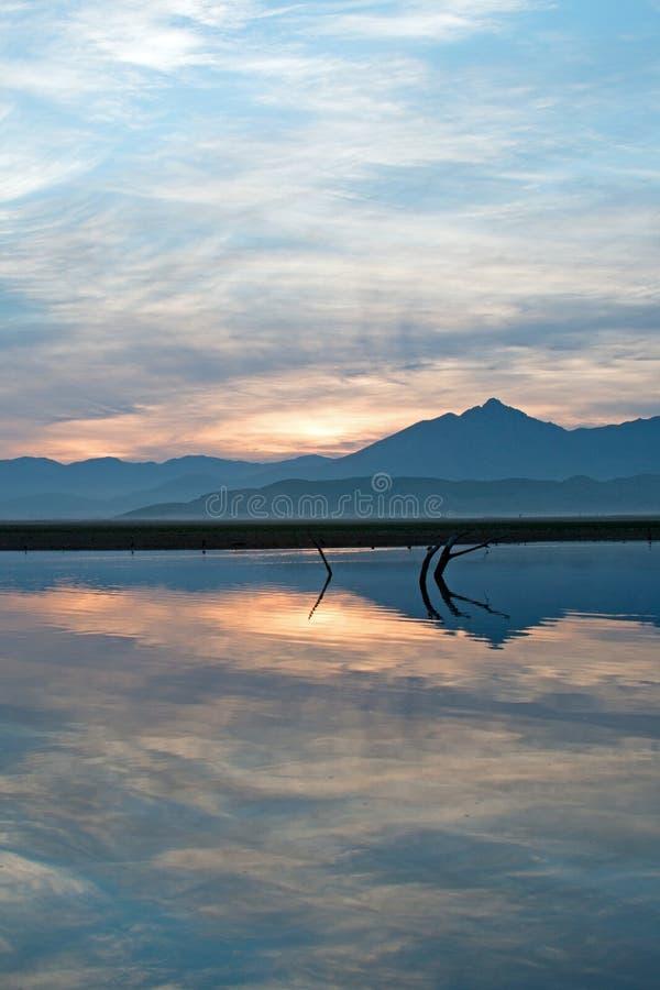 Wschód słońca nad stronniczo zanurzać nieżywymi gałąź w Jeziornym Isabella w sierra Nevada góry w środkowym Kalifornia usa obraz royalty free