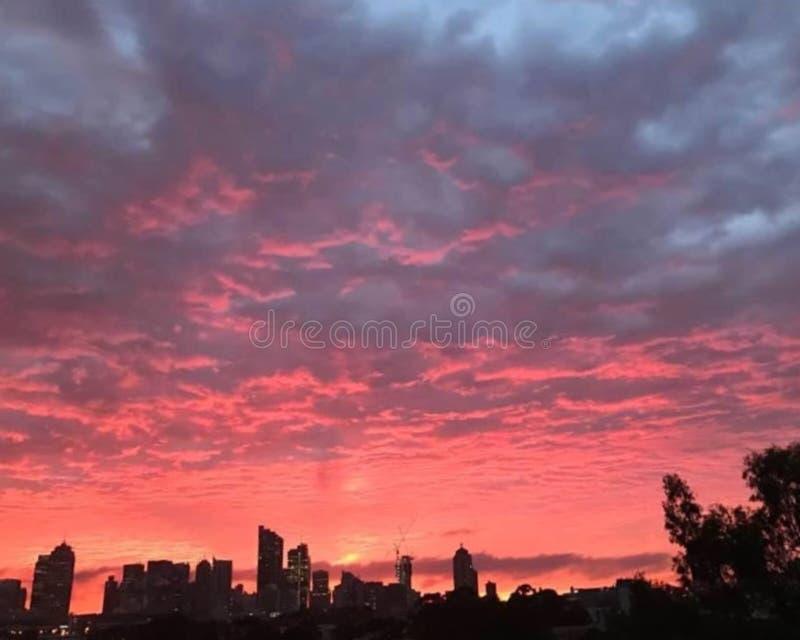 Wschód słońca nad Sydney miastem, Australia zdjęcia royalty free
