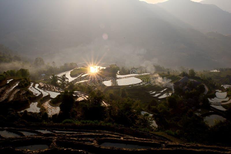 Wschód słońca nad tarasowatymi ryżowymi polami w podlewanie sezonie zdjęcia royalty free