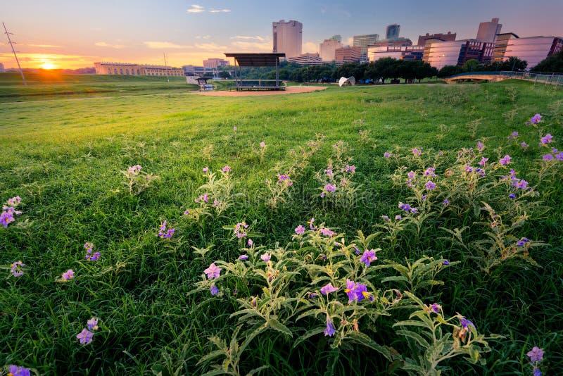 Wschód słońca Nad W centrum Fort Worth obraz royalty free