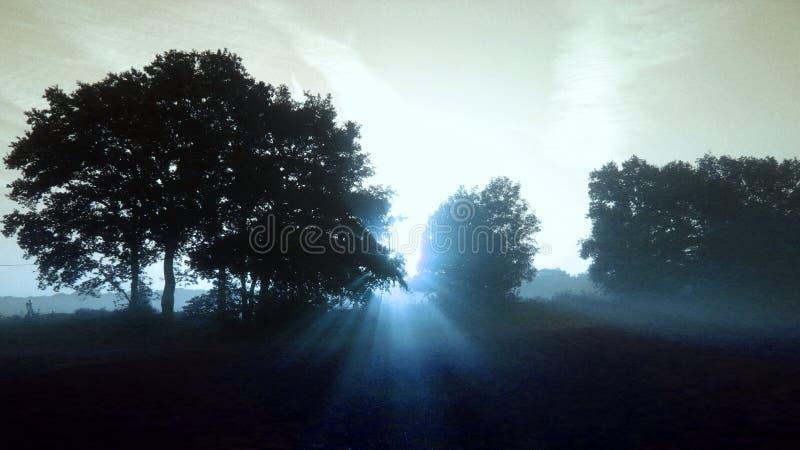 Wschód słońca promienieć - wersja 1 obraz royalty free