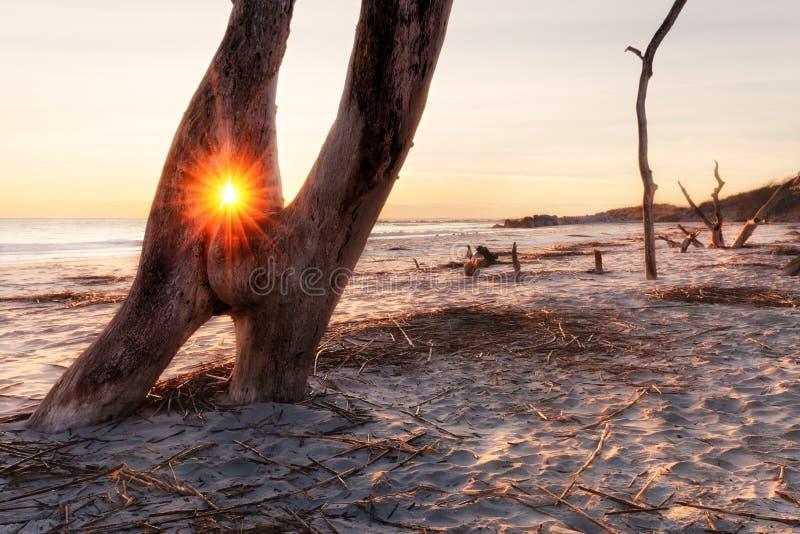 Wschód słońca przy głupoty plażą obrazy stock