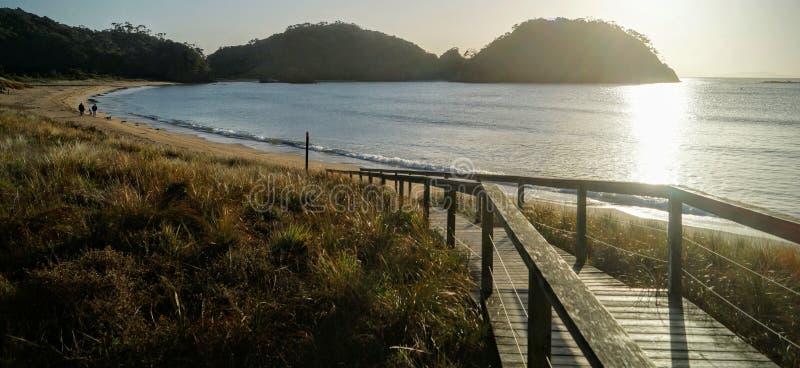 Wschód słońca przy plażą w Nowa Zelandia obrazy stock