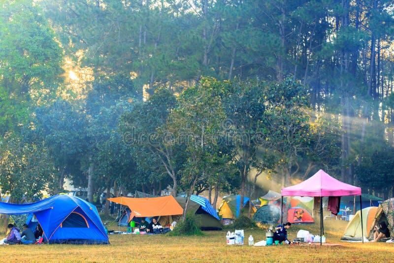 Wschód słońca przy Thung Salaeng Luang parkiem narodowym, ludzie jest campingowym namiotem z mgłowym lub mglistym na ranku fotografia royalty free