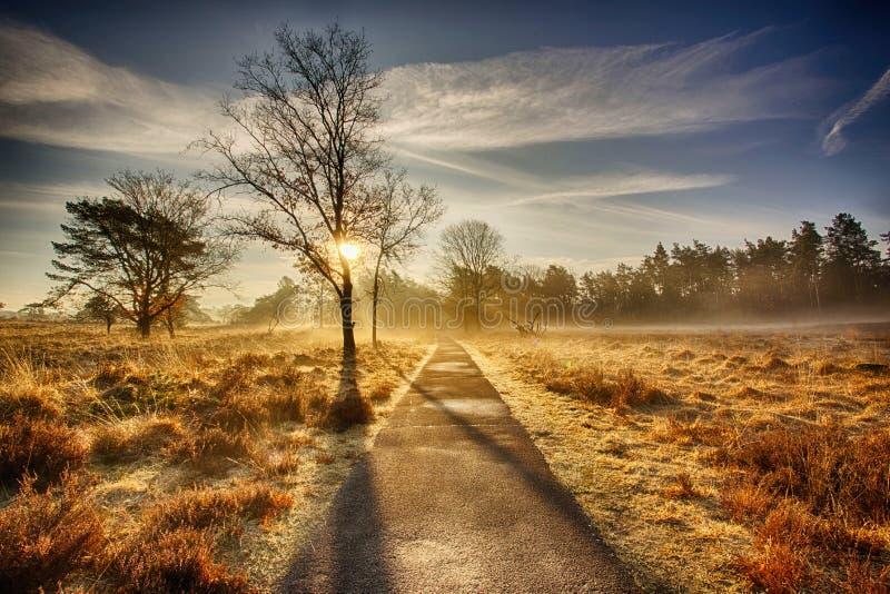 Wschód słońca w Hoog Buurlo zdjęcie stock