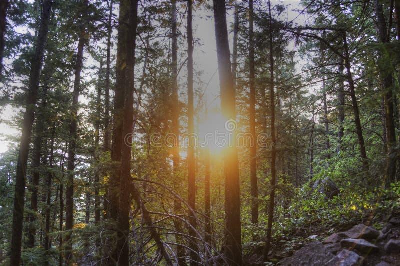 Wschód słońca w Kolorado fotografia royalty free