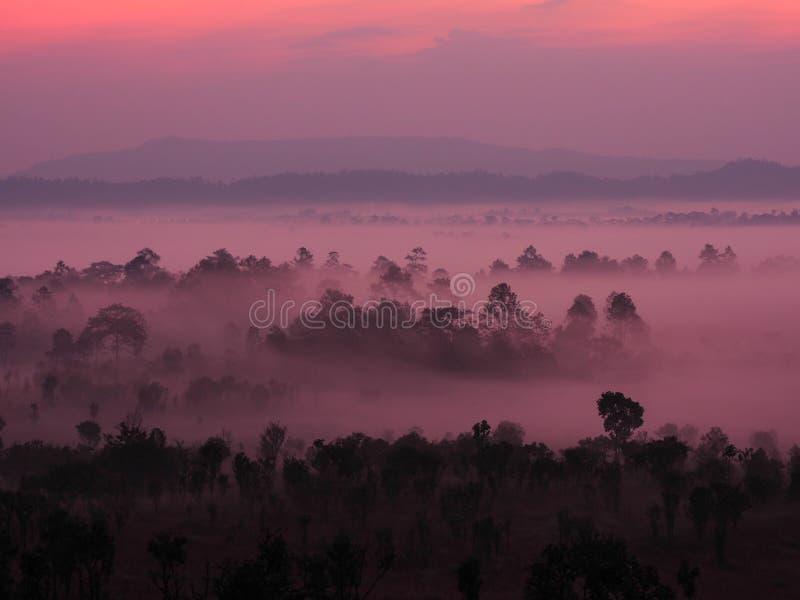 Wschód słońca w krajobrazie z mgłą przy Thung Salaeng Luang obywatela Pa obrazy stock