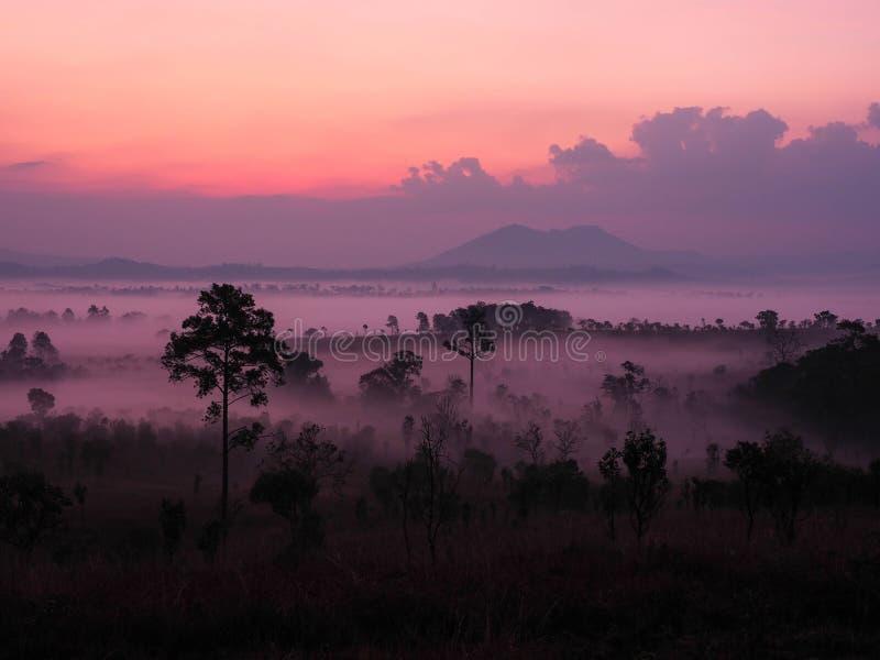 Wschód słońca w krajobrazie z mgłą przy Thung Salaeng Luang obywatela Pa obraz stock