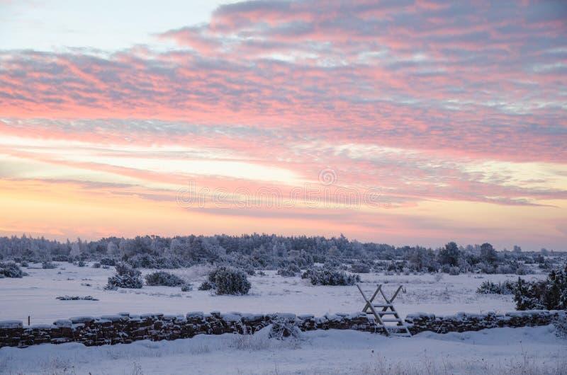 Wschód słońca w zima krajobrazie zdjęcia royalty free
