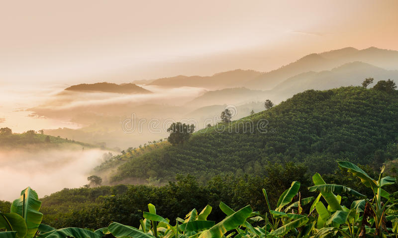Wschód słońca z morzem mgła nad Mekong rzeka w Tajlandia zdjęcie stock