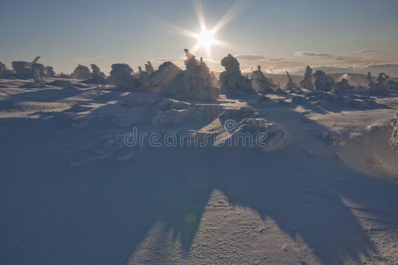 wschód słońca zima zdjęcie royalty free