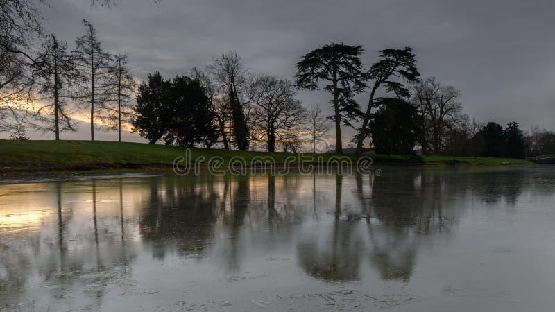Wschodów słońca drzewni jeziorni odbicia obrazy royalty free