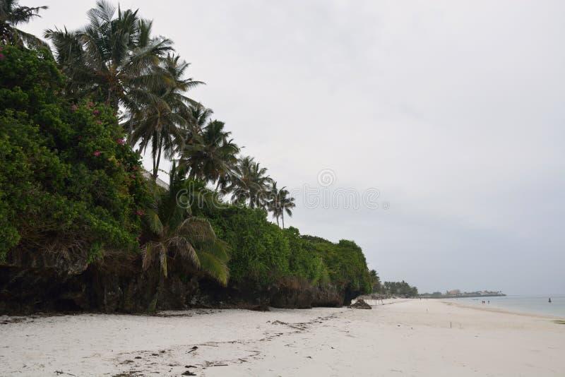 Wschodni afrykanina wybrzeże ocean indyjski, Kenja zdjęcia royalty free