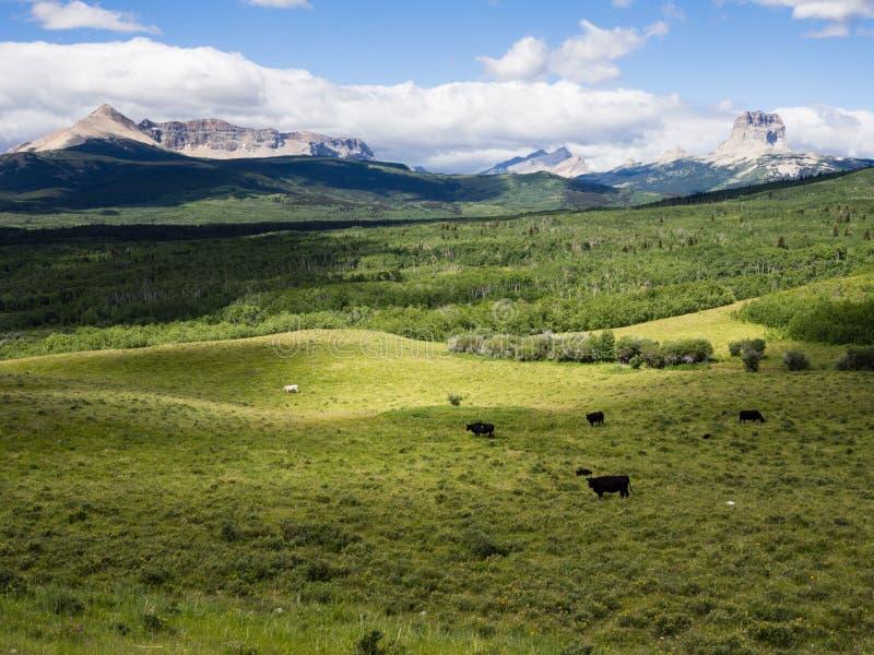 Wschodnia granica lodowa park narodowy z Naczelną górą na horyzoncie fotografia stock