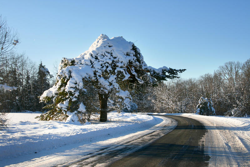 Download Wsi drogi zima zdjęcie stock. Obraz złożonej z słońce - 13342034