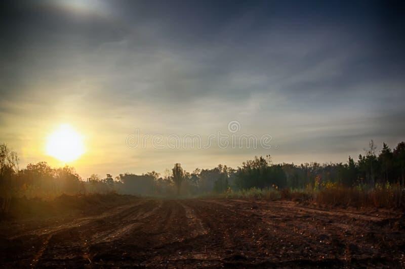 wsi dzień lato pogodny wschód słońca zdjęcie stock
