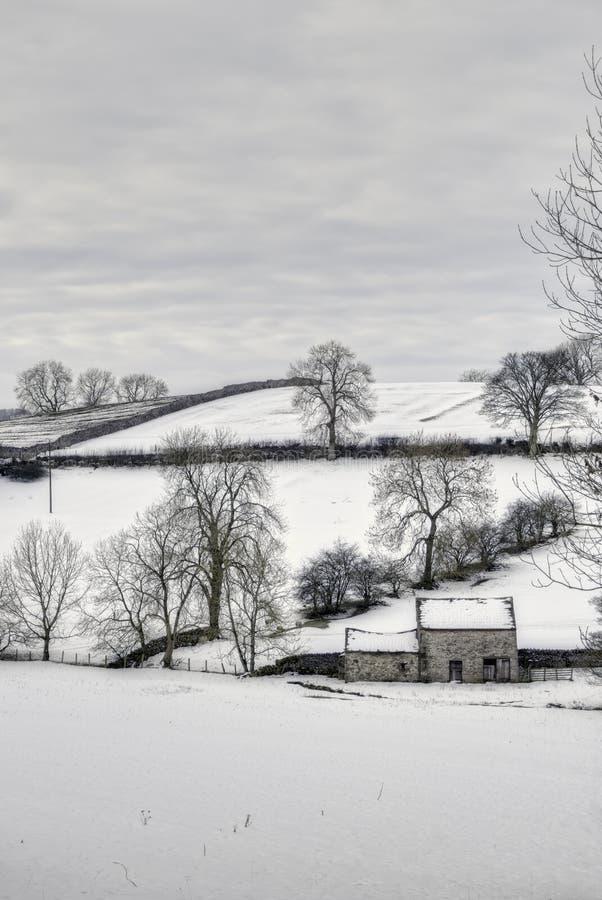 wsi ponura zima obrazy royalty free