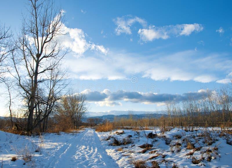 wsi prosty drogowy śnieżny obraz stock