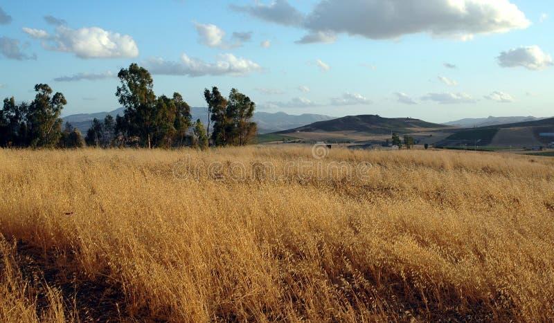 wsi wzgórza zdjęcie royalty free
