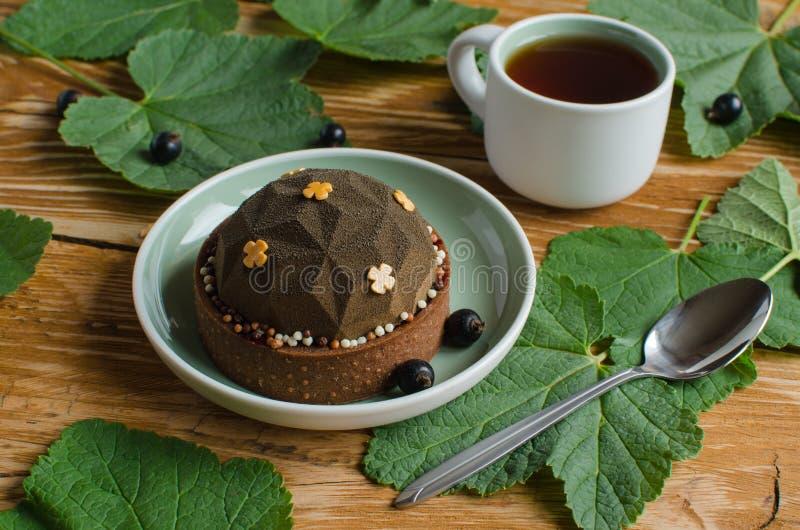 Współczesnej czekolady i czarnego rodzynku mousse mini tarta zdjęcie stock