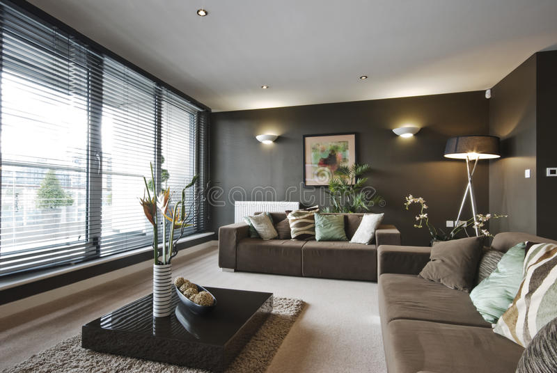 współczesny żywy luksusowy pokój zdjęcie royalty free