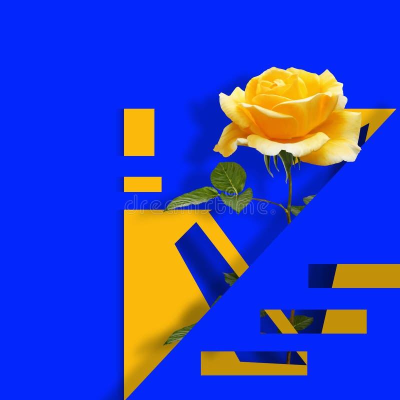 Współczesny sztuka współczesna plakat z kolor żółty różą na błękitnym abstrakcjonistycznym tle ilustracji
