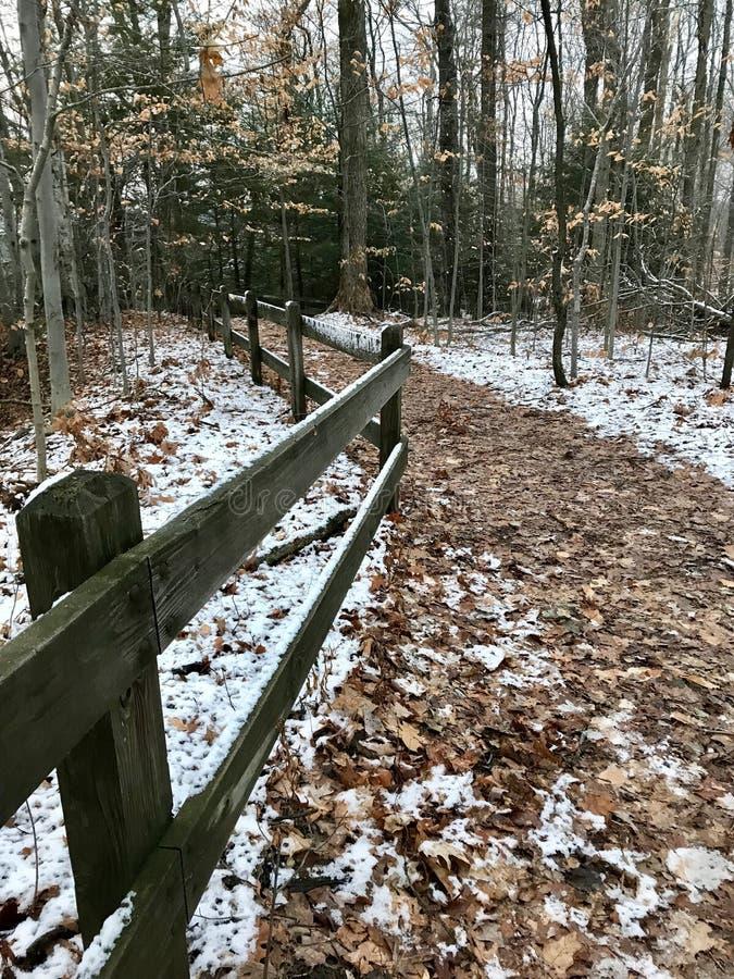 Wspaniała ścieżka PRZEZ PIĘKNEGO lasu ZAKRYWA NA śniegu NA obich stronach zdjęcia stock