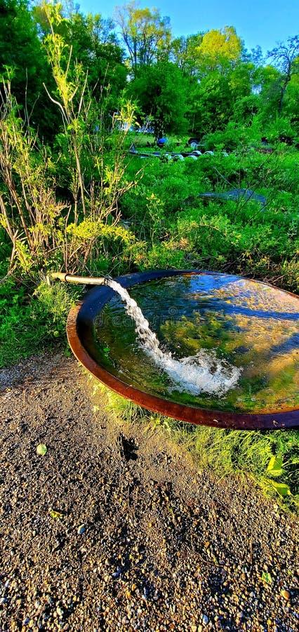 Wspaniała Słodkowodna wiosna zdjęcie stock