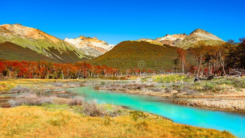 Wspaniały krajobraz Patagonia ` s Tierra Del Fuego park narodowy obrazy stock