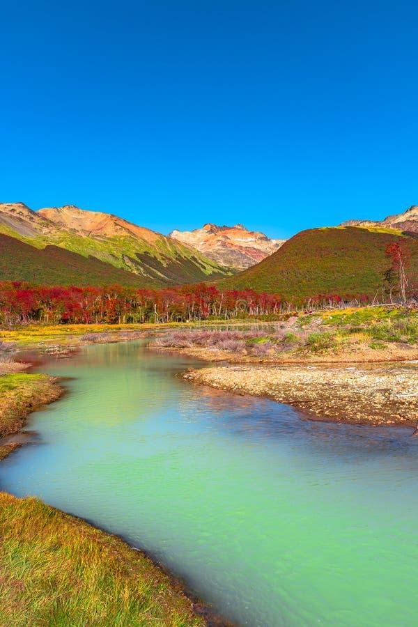 Wspaniały krajobraz Patagonia& x27; s Tierra Del Fuego park narodowy zdjęcie stock