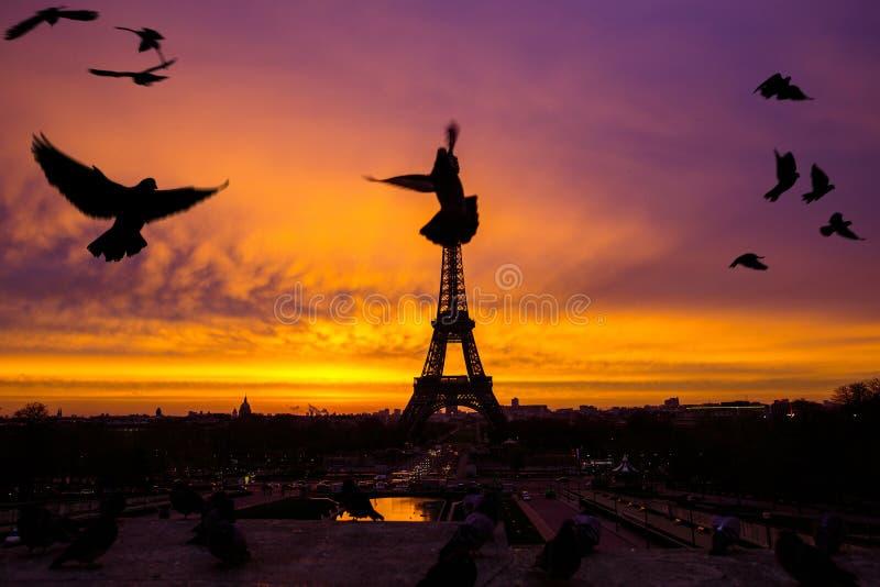 Wspaniały nieprawdopodobny bzu wschód słońca Widok Eiffel zdjęcie stock