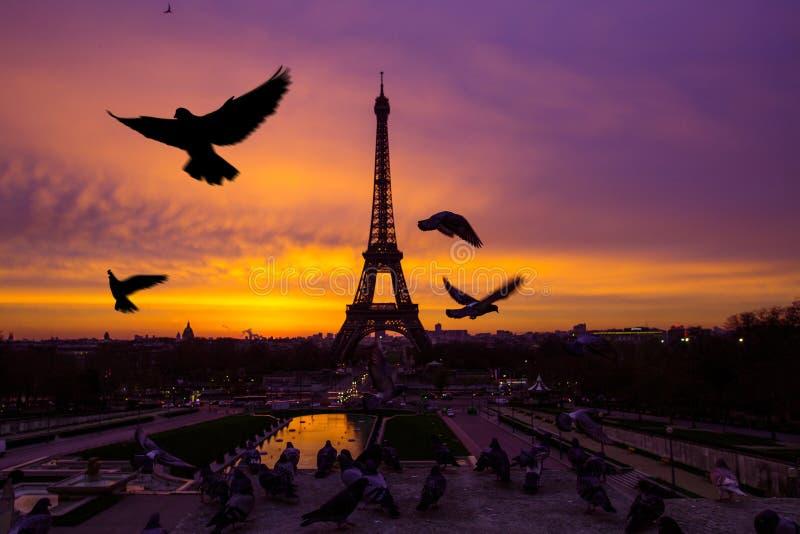 Wspaniały nieprawdopodobny bzu wschód słońca Widok Eiffel obraz royalty free