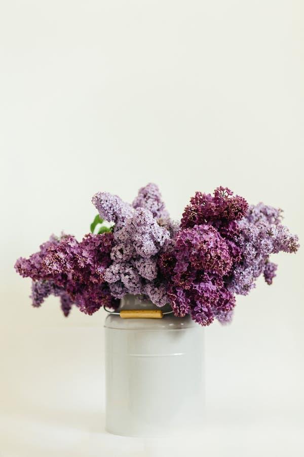 Wspaniały purpurowy bukiet bez kwitnie w eleganckiej wazie na białym tle zdjęcie stock