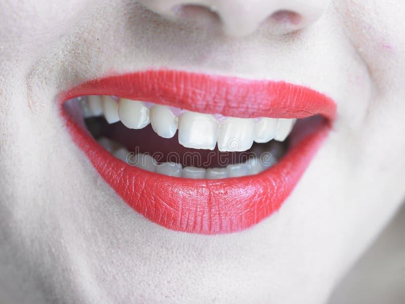 wspaniały warg makeup uśmiechu ja target2533_0_ zdjęcia royalty free