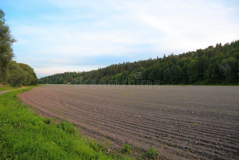 Wspaniały widok zaorany śródpolny przygotowywający dla siać zim uprawy rolnictwa comcept Szwecja fotografia royalty free