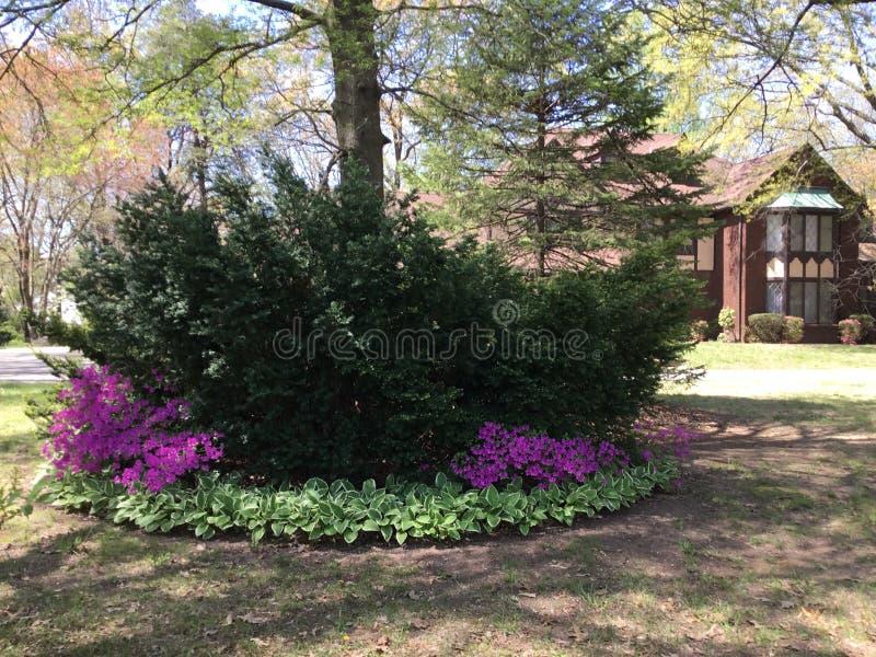 Wspaniały zielony dwór lubi własność w Anne Arundel okręgu administracyjnym w Maryland zdjęcie royalty free