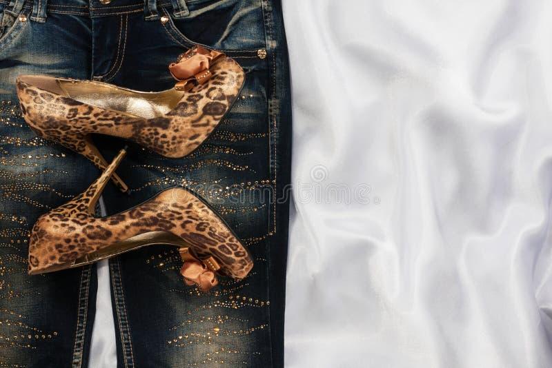Download Wspaniała Kobiety Moda, Cajgi, Buty W Rhinestones Obraz Stock - Obraz złożonej z feminizm, heeler: 57664443