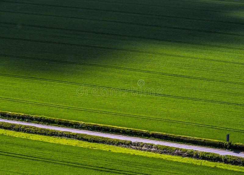 Wspaniali upraw pola przy zmierzchem zdjęcia stock