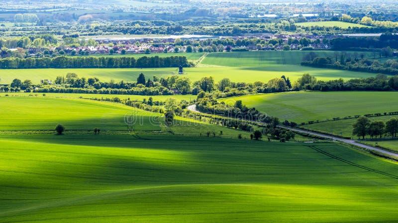 Wspaniali upraw pola przy zmierzchem obrazy stock