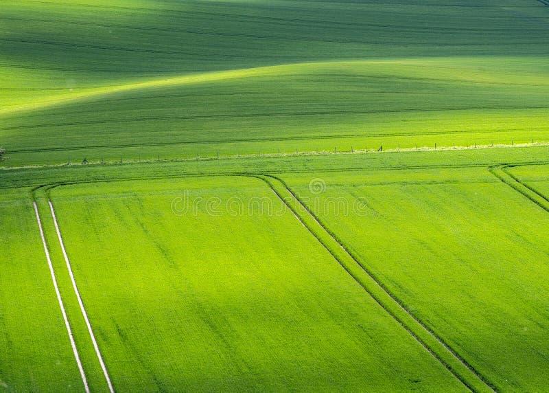 Wspaniali upraw pola przy zmierzchem obraz stock