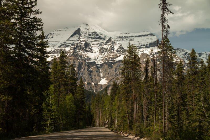 Wspina się Robson, Kanadyjskie Skaliste góry, Kanada zdjęcia royalty free