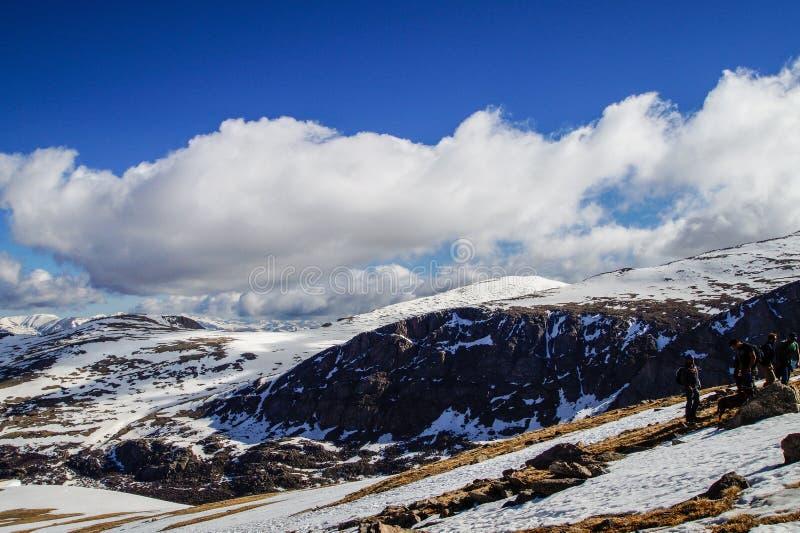 Wspinaczkowa góra Bierstadt zdjęcia royalty free