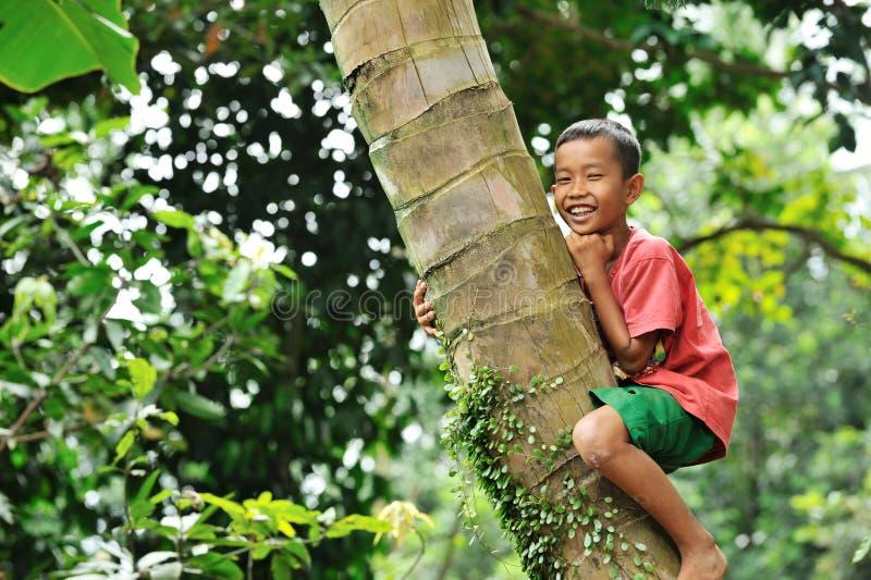 wspinaczkowy chłopiec drzewo fotografia stock