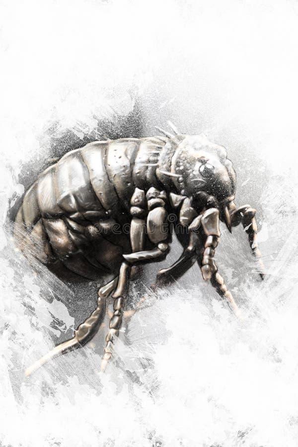 Wszy ilustracja robić z cyfrową pastylką, insekt ilustracji