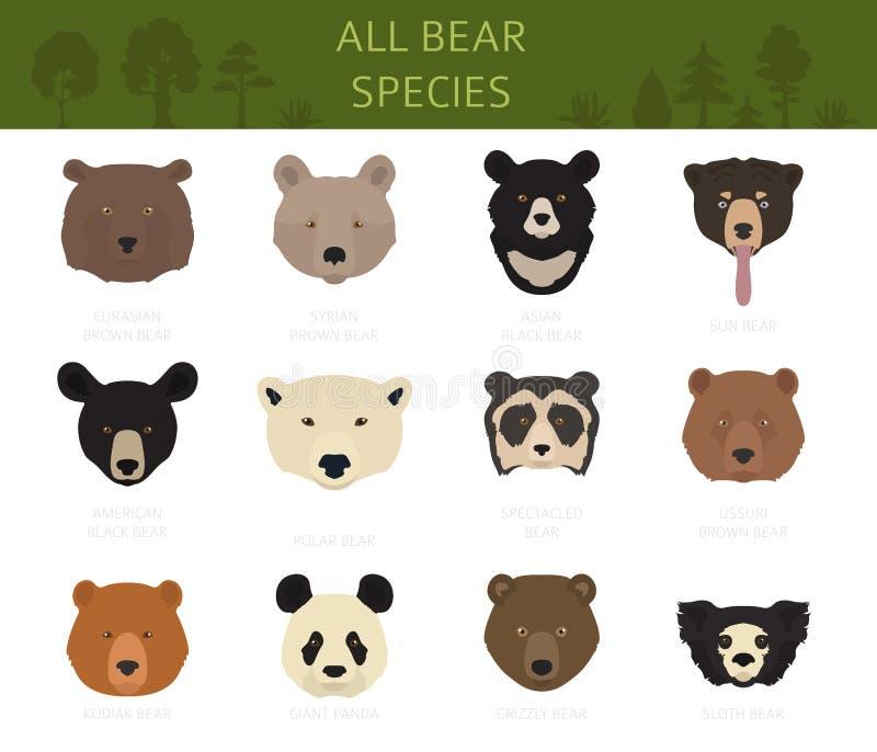 Wszystkie światowi niedźwiadkowi gatunki w jeden secie znosi kolekcj? ilustracji