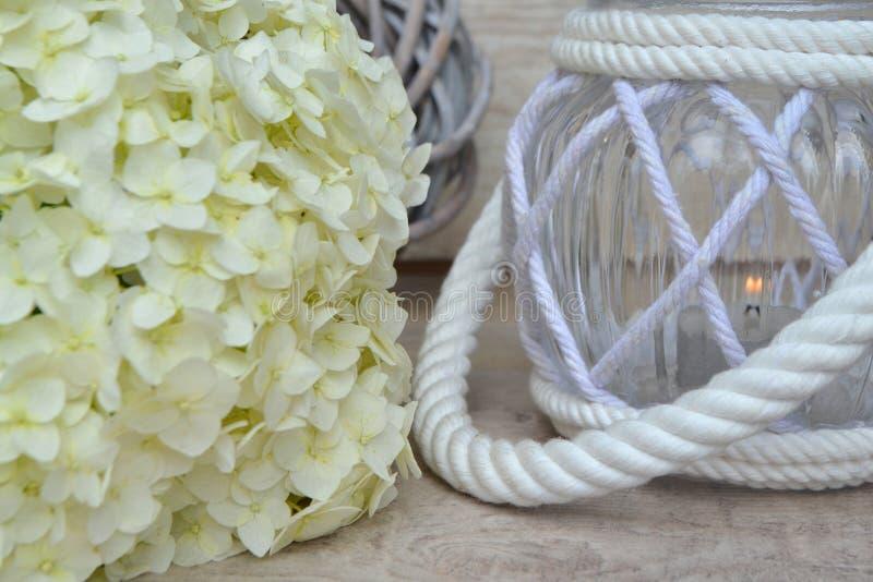 Wszystkie dusza dnia «wspominania pojęcie, biała hortensja z lampionem zdjęcia stock