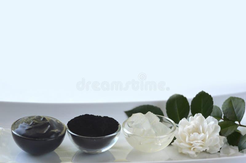 Wszystkie naturalni skór traktowania dla trądzika, wazeliniarskiej skóry, detox, włosy i ciała, zdjęcia royalty free